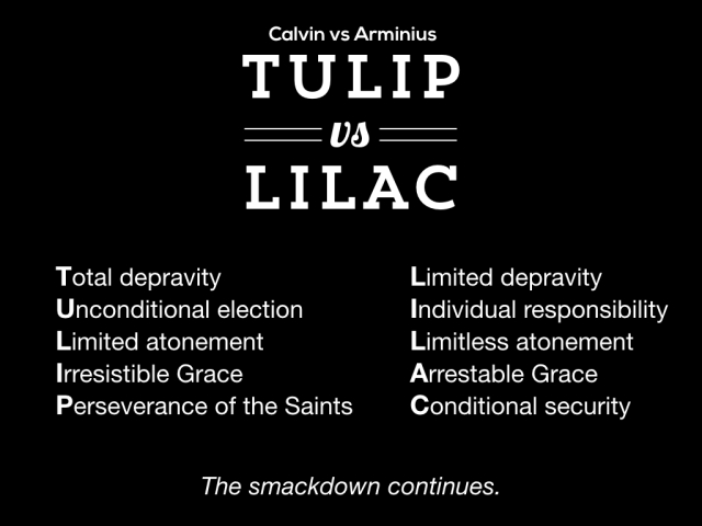 Tulip v Lilac.001.jpeg